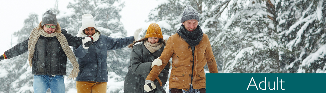Adults walking in the snow